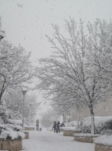 לא שלג ארקטי, סתם שלג ירושלמי דאשתקד